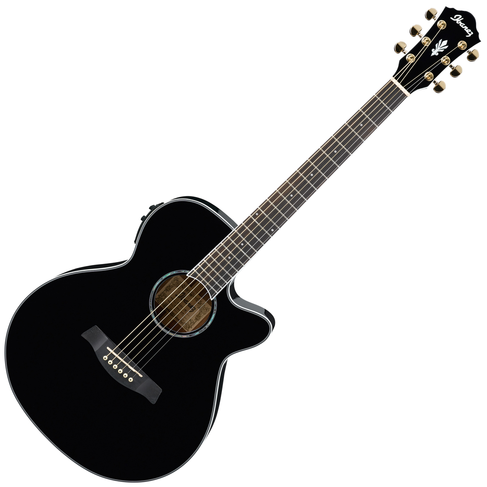 musicworks guitars acoustic electric guitars acoustic electric guitar. Black Bedroom Furniture Sets. Home Design Ideas