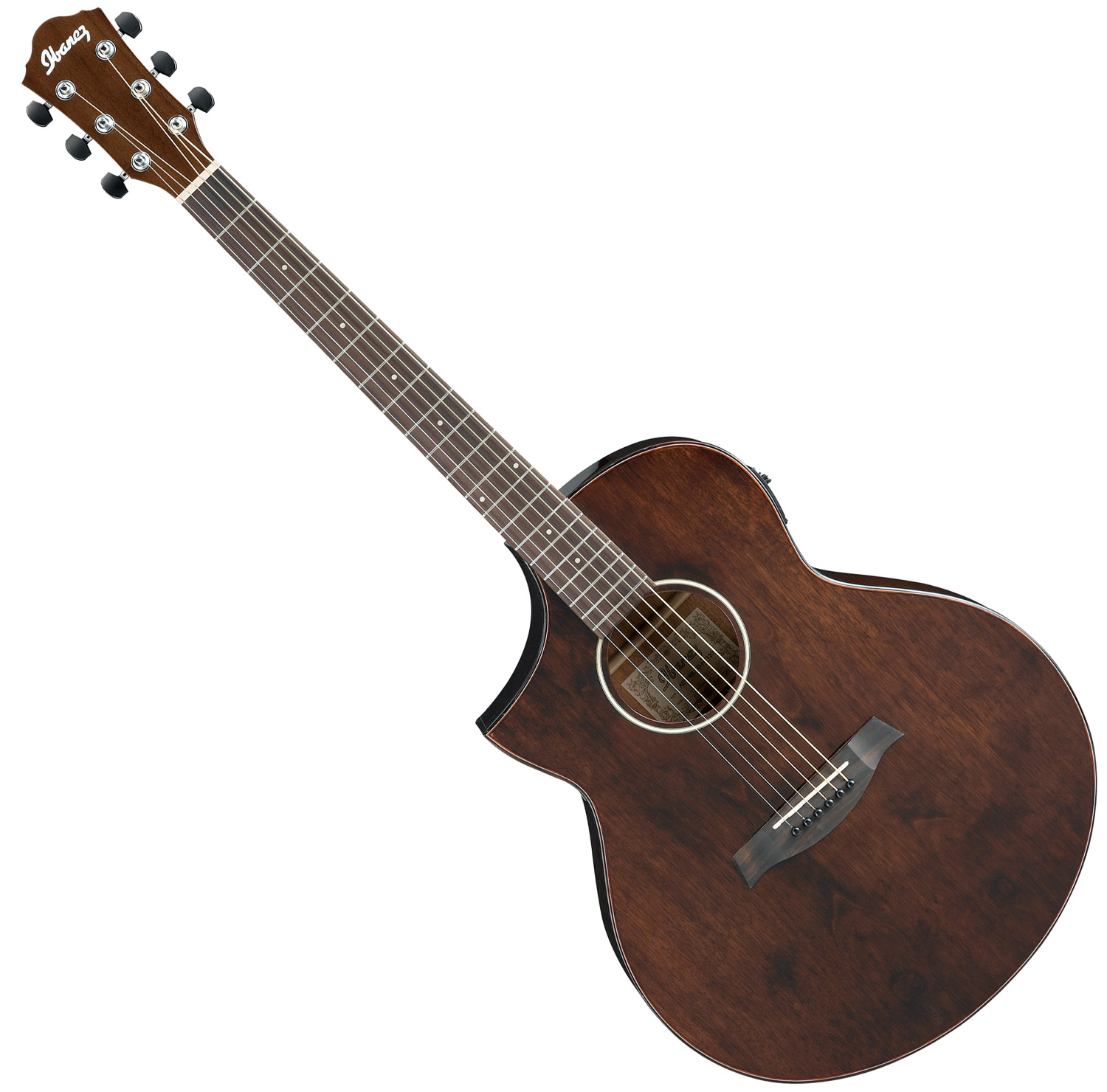 Ibanez Exotic Wood Acoustic Electric Natural