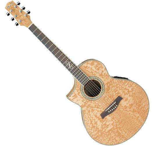Musicworks Guitars Acoustic Electric Guitars Acoustic