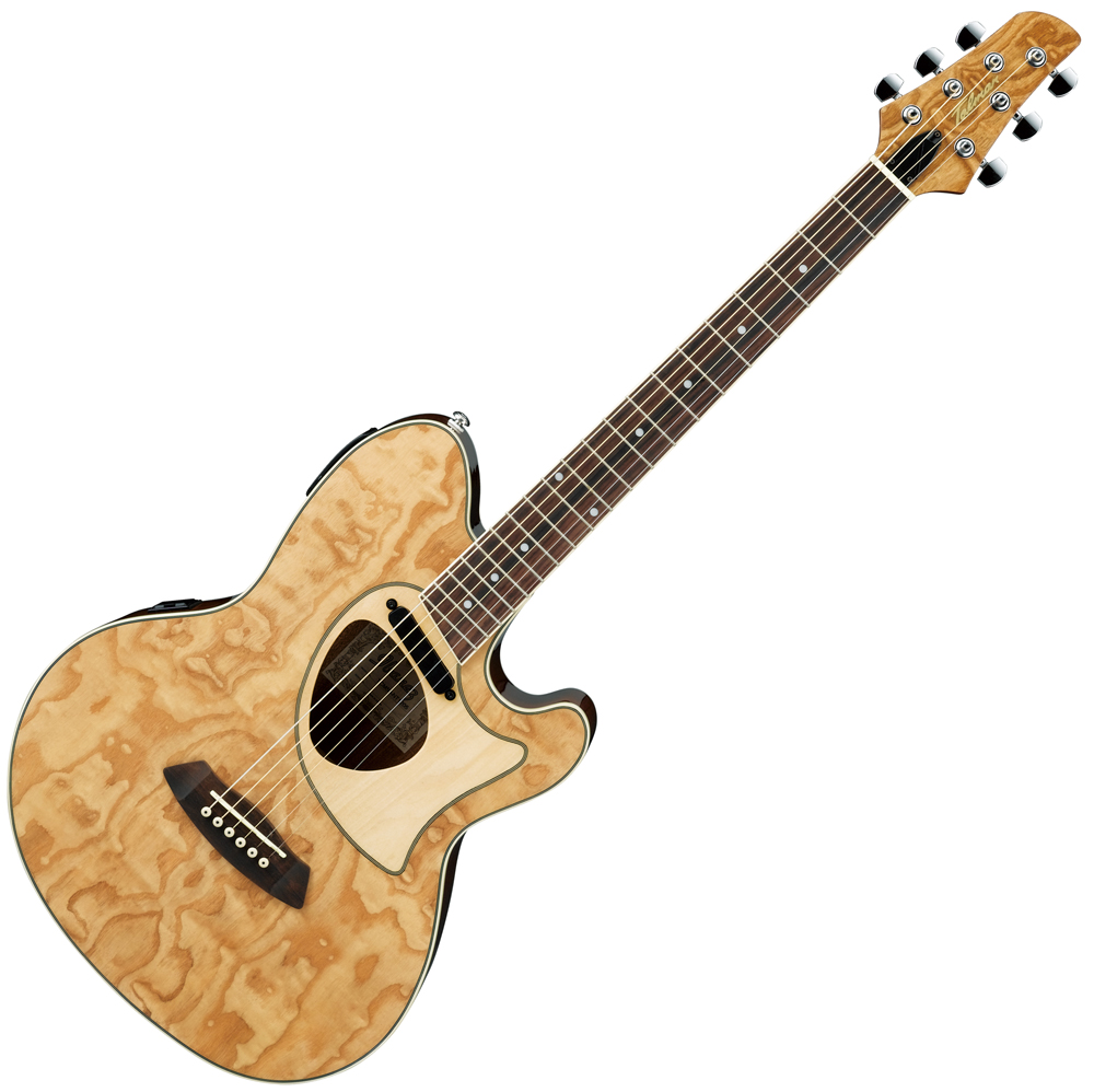 Musicworks Guitars Acoustic Electric Guitars Acoustic Electric
