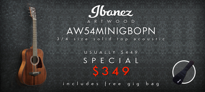 Ibanez Artwood 3/4 Acoustic AW54MINI Special