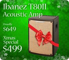 Ibanez T80ii Troubadour Acoustic Amp for Xmas!