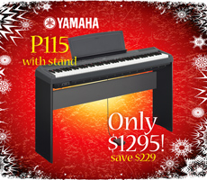 Xmas Yamaha P115 and L85 Stand Package