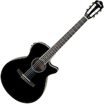 Ibanez Acoustic/Electric Guitar, Black AEG10NIIBK