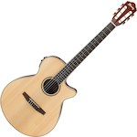 Ibanez Acoustic/Electric Guitar, Natural AEG10NIINT