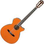 Ibanez Acoustic/Electric Guitar, Tangerine AEG10NIITNG
