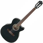 Ibanez Acoustic/Electric Guitar, Black Flat AEG6TNBKF