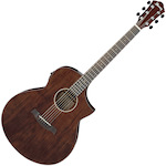 Acoustic Electric Guitar Clearance