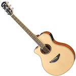 Acoustic Electric Left Handed