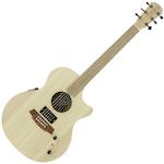 Acoustic Electric Guitar