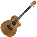Cole Clark Acoustic Electric Guitar Grand Auditorium All Blackwood CCAN3ECBLBL