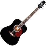 Ashton Acoustic Guitar, Black D24BK