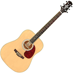 Ashton Acoustic Guitar, Matt Finish D24NTM