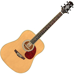 Ashton D24 Acoustic Guitar, Natural D24NT
