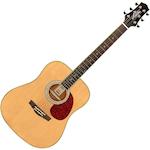Ashton D24 Acoustic Guitar, Natural D24NT