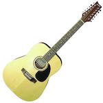 Ashton 12 String Acoustic Guitar, Matt D2512NTM