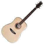 Ashton Acoustic Solid Top Guitar Natural L/Hand D40SLNT