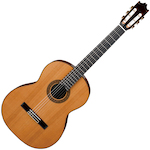Ibanez Classical Guitar Solid Top, Natural G300NT