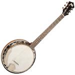 6-String Banjo