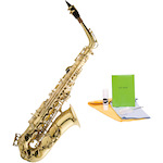 Ashton Student Alto Saxophone with Maintenance Pack SX10-SMP100