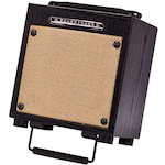 Ibanez Acoustic Amp 10 Watts T10
