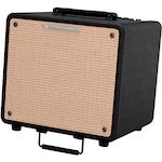 Ibanez Acoustic Amp 80 Watts T80N
