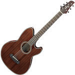 Ibanez Talman Acoustic/Electric, Natural TCY74OPN