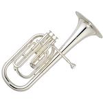 Tenor / Alto Horn