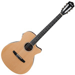 Ibanez AEG7TN Acoustic Electric Guitar AEG7TNNT