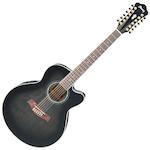 Ibanez Acoustic/Electric Guitar 12 String, Transparent Black AEL2012ETKS