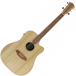 Cole Clark Acoustic Electric Guitar Bunya Top Blackwood B&S CCFL2ECBB