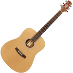 Ashton D20 Acoustic Guitar, Natural Matt D20NTM