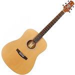 Ashton D20 Acoustic Guitar, Natural Gloss D20NT