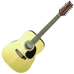 Ashton D2512 12 String Acoustic Guitar, Matt D2512NTM