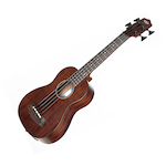 Kala Electric Bass Ukulele KAUBASSPSGR