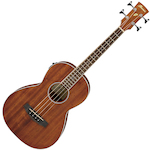 Ibanez Acoustic Bass PNB14EOPN
