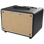 Ibanez Acoustic Amp 30 Watts T30